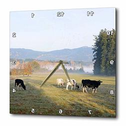 3D Rose Canada-Vancouver Island. Cows Grazing on Grass at a