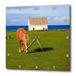 3dRose Elysium Photography - Animals - Horse grazing on Prin