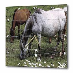 3dRose TDSwhite – Horse Equine Photos - Grazing Horses Beh