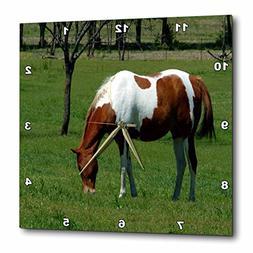 3dRose TDSwhite – Horse Equine Photos - Grazing Pinto Pret