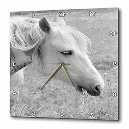 3dRose TDSwhite – Horse Equine Photos - Grazing Grey Horse